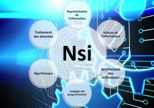 specialite-nsi-en-1ere-generale-a-partir-de-la-rentree-2021